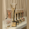 Stevie Award 2013_website