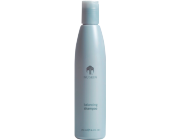 Balancing Shampoo (Normal to Oily Hair Type)