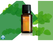 Epoch Peppermint Essential Oil