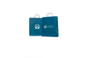 NSE paper bag large (5-pack)